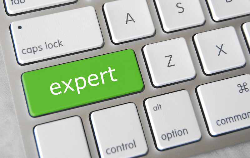 The 4 Errors of Experts